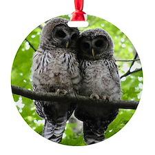 Cuddling Owls Ornament