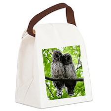 Cuddling Owls Canvas Lunch Bag