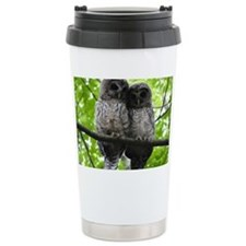 Cuddling Owls Travel Mug