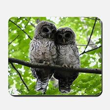 Cuddling Owls Mousepad