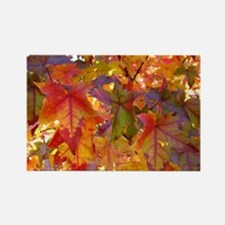 Autumn Leaves 97M Red Colorful Fa Rectangle Magnet