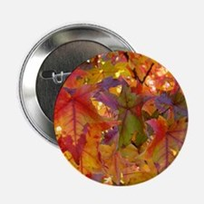 """Autumn Leaves 97M Red Colorful Fall T 2.25"""" Button"""