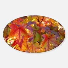 Autumn Leaves 97M Red Colorful Fall Sticker (Oval)