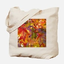Autumn Leaves 97M Red Colorful Fall Tree  Tote Bag