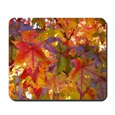 Autumn Leaves 97M Red Colorful Fall Tree Mousepad