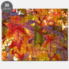 Autumn Leaves 97M Red Colorful Fall Tree Le Puzzle