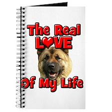 RealLoveOfMyLife Akita Journal