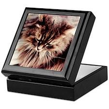 Daisy Cat Keepsake Box