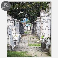 New Orleans Cemetary Puzzle