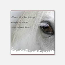 "The softness of a horses ey Square Sticker 3"" x 3"""