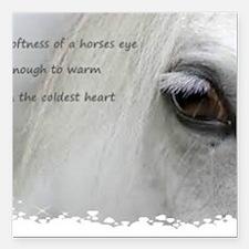 "The softness of a horses Square Car Magnet 3"" x 3"""