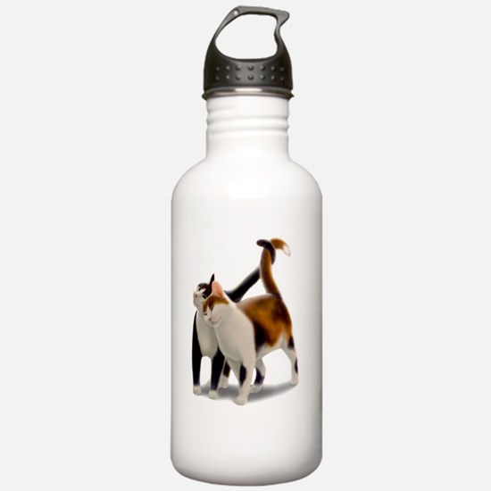 Kitty Cat Friends Water Bottle