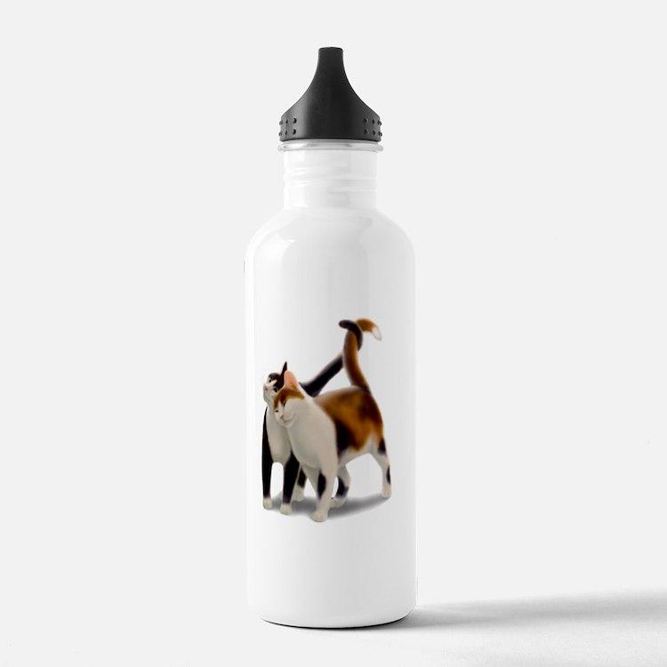 Kitty Cat Friends Water Bottle