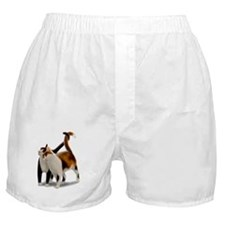 Kitty Cat Friends Boxer Shorts