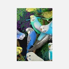 Budgerigars in Ferns Rectangle Magnet