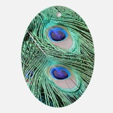 Peacock feather 001 Oval Ornament