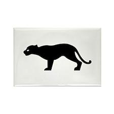 Cougar - Puma Rectangle Magnet (10 pack)