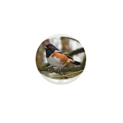 Spotted Towhee Mini Button (10 pack)