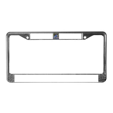 Steller's Jay License Plate Frame