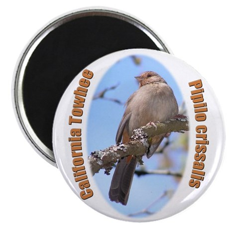 "California Towhee 2.25"" Magnet (100 pack)"