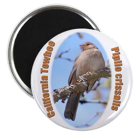 "California Towhee 2.25"" Magnet (10 pack)"