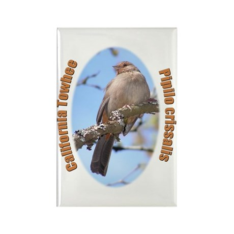 California Towhee Rectangle Magnet (10 pack)