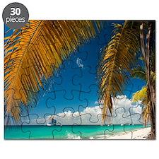 Palm trees cruise Catalina Island - Copy (3 Puzzle