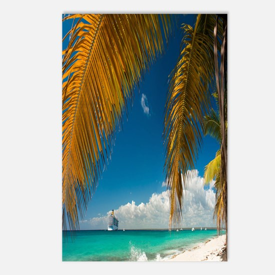 Palm trees cruise Catalin Postcards (Package of 8)