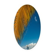 Palm trees cruise Catalina Island Oval Car Magnet