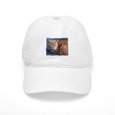 Cute Cats curled up Baseball Cap