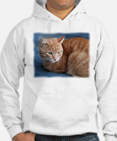 Unique Orange cats Hoodie