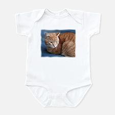 Funny Orange tabby cat Infant Bodysuit