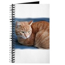 Cute Orange tabby Journal