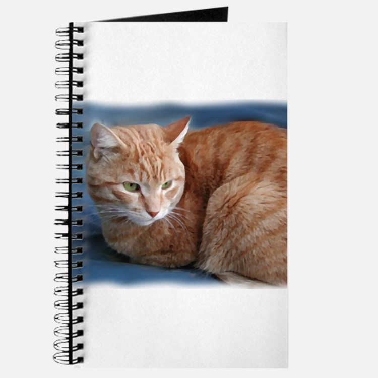 Cute Cats curled up Journal