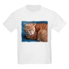 Cute Cats curled up T-Shirt