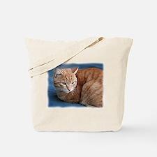 Funny Orange cat Tote Bag