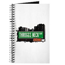 Throggs Neck Blvd, Bronx, NYC Journal
