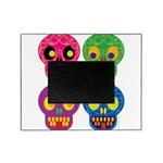 Colored skull Picture Frame