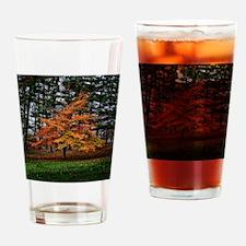 Autumn Maple Tree 1 Drinking Glass