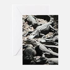 Greeting Cards (Pk of 10) alligators
