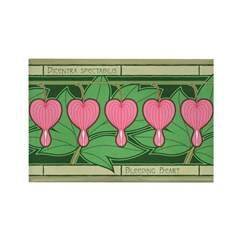 Bleeding Heart Rectangle Magnet (10 pack)