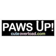 [White Paws] Bumper Bumper Sticker