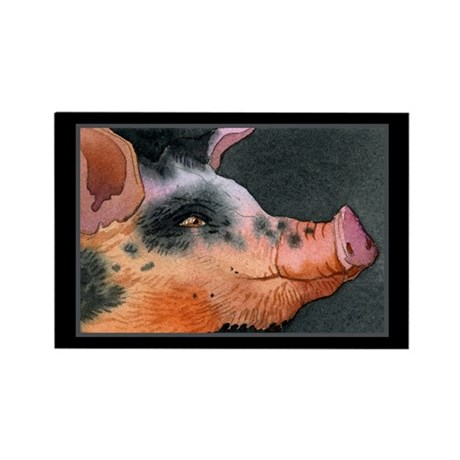DOWN ON THE FARM Rectangle Magnet (10 pack)