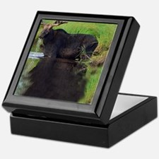 662_h_f  pic frame (1) Keepsake Box