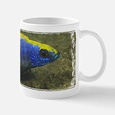 Lithobates Mug
