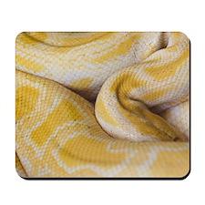 Albino Python Mousepad