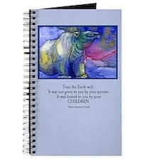 Pink Polar Skies Journal