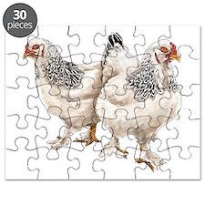 Brahma Hens Puzzle
