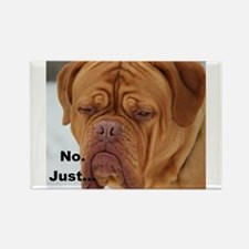 Dour Dogue No. Magnets