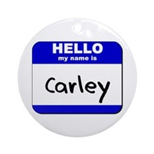 hello my name is carley  Ornament (Round)